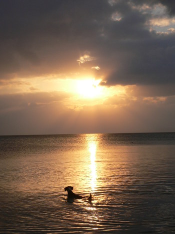 Okinawa2007_031