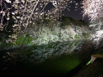 Chidorigafuchi_2