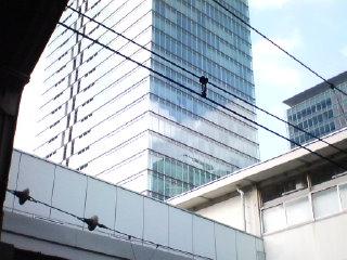 ぽかぽか陽気(^-^)